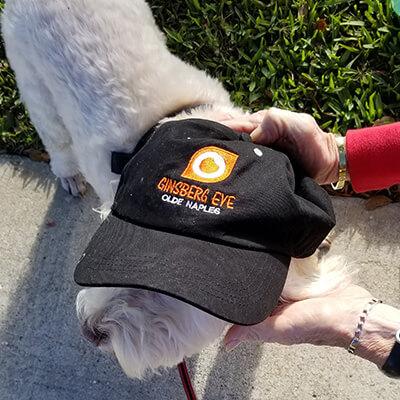 Dog wearing Ginsberg hat